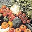 Nel 2050 un italiano su due sarà vegetariano