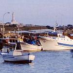 Pesca, stop per 45 giorni Portopalo.