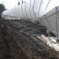 I produttori agricoli: «Pulire i canali di scolo»