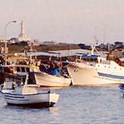 Portopalo, lo sconforto dei pescatori
