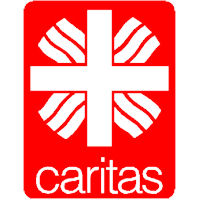 Colletta alimentare con la Caritas - La solidarietà supera la crisi