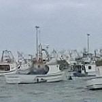 Marineria, la crisi a una svolta