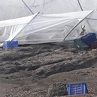 Grido d'allarme dei produttori: «I campi sono ormai un pantano, aiutateci»