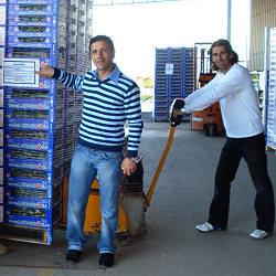 La crisi dei produttori agricoli: listate  a lutto le casse di pomodoro