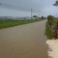 Viabilità in tilt per la pioggia, disagi per molti imprenditori agricoli