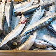 Mangiare più pesce azzurro.