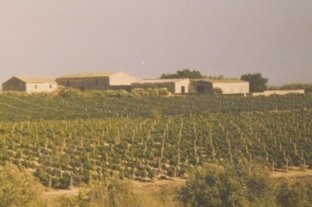 Pachino Promontorio campagna