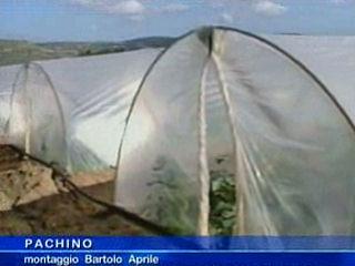 Crisi agricoltura, Morana: I Politici intervengano