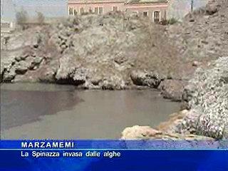 Marzamemi - La Spinazza invasa dalle alghe
