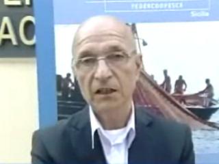 Confcooperative e FederCopesca: il punto sulla nuova normativa europea che penalizza le marinerie
