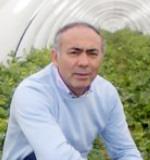 Melone di Pachino, cresce la fiducia per il 2010