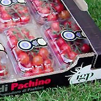 Il pomodoro di Pachino IGP nelle settimane speciali dell'Enogastronomia