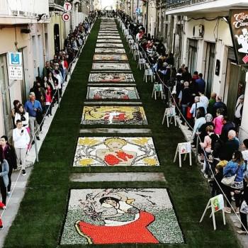 SfioratI i 15 mila partecipanti. Tutta la comunità festeggia il successo dell'Inverdurata 2019