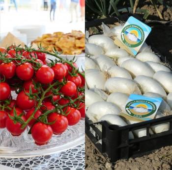 Pomodoro di Pachino in Puglia per due giornate dedicate a Dop e Igp