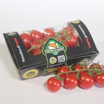 Da oggi nuovo packaging biodegradabile per il Pomodoro di Pachino a marchio IGP